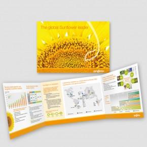 SYNGENTA Sunflower Global Brochure 11 INT